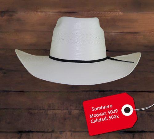 Sombrero Modelo 5025 · Leer más · 5029 0501030d761