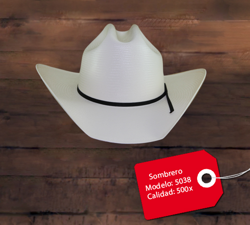 Sombrero Modelo 5038
