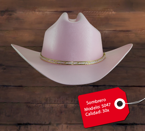 Sombrero Modelo 5047