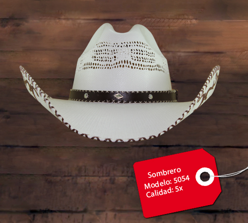 Sombrero Modelo 5054